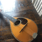1914-martin-style-d-mandolin-2